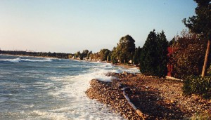 Lake Huron shoreline with heavy water towers visible behind treeline.